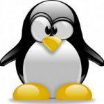 Come creare contenuti web a prova di Penguin